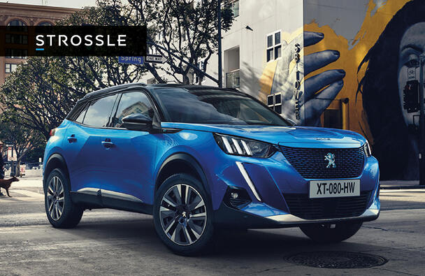 Case: The launch of Peugeot's new electric cars
